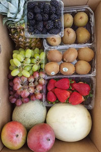 fruit mix box t