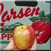 Apple - Braeburn